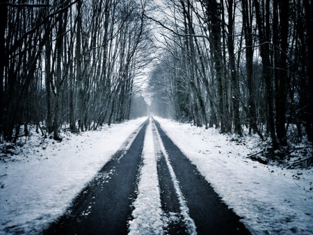 A snow-covered road in the forest