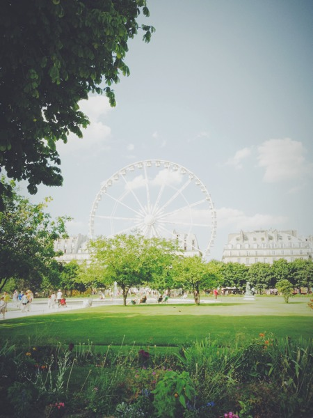 Summer shot at Jardin des Tuileries